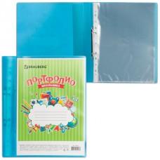 Папка для портфолио школьника, 2 кольца, 20 файлов, пластик, полупрозрачный, синяя, BRAUBERG, 126557
