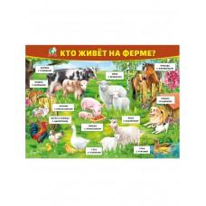 "Плакат ""Кто живёт на ферме?"""