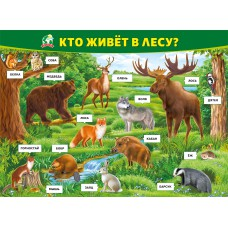 "Плакат ""Кто живёт в лесу?"""