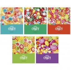 "Тетрадь 48л., А5, клетка ArtSpace ""Стиль. Colorful candy"""