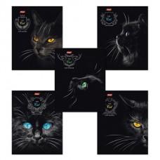 """Тетрадь 48 л., HATBER, клетка, выборочный лак, """"Royal Cats"""" (Кошки)"""